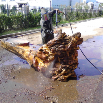 Gendiao cleaning