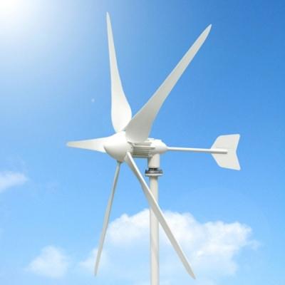 600W wind turbines